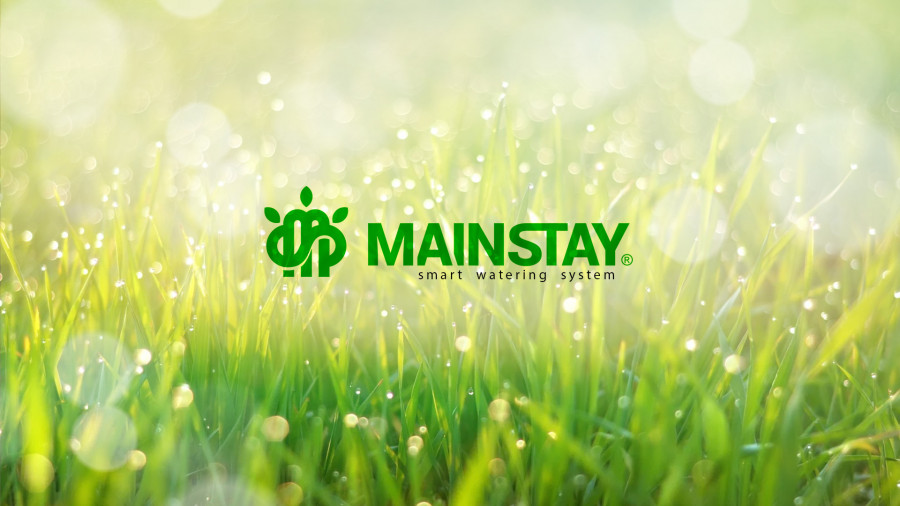 MAINSTAY - From idea to smart watering system